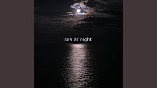 Sea at Night (feat. Fulvio Chiara)