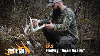 "White Gold | Finding Dead Deer While Shed Hunting ""Ep.2"""