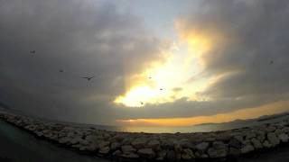 Phoenix - Love like a sunset Part 2