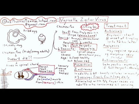 Shingles and Chicken Pox: Varicella Zoster Virus - One Minute Medical School