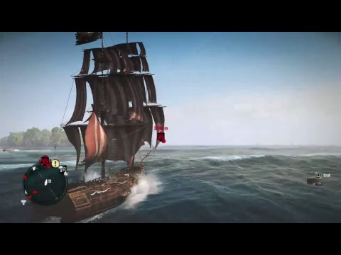 Preserving the Pirate Republic           Assassin's Creed IV: Black Flag #10