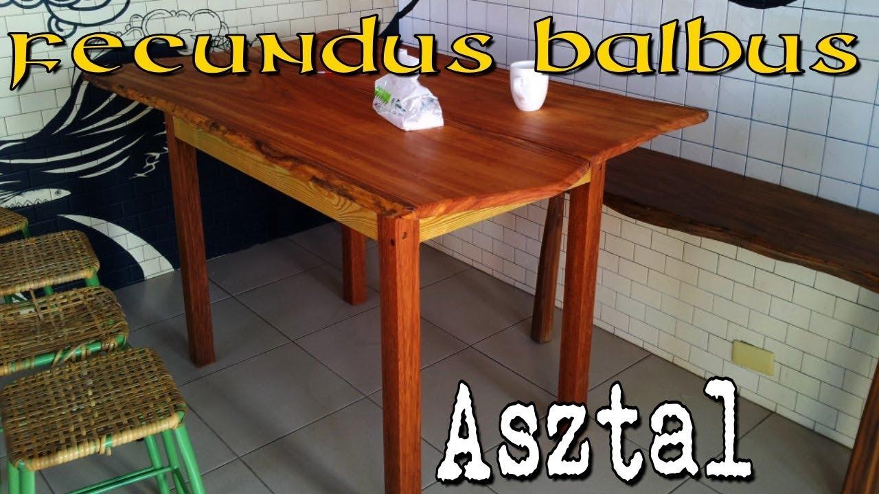 Ascaris asztal)