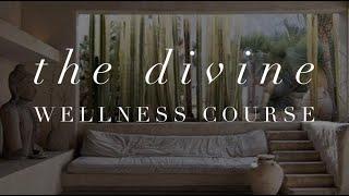 Michelle Mazur Life Wellness - Divine Wellness online course
