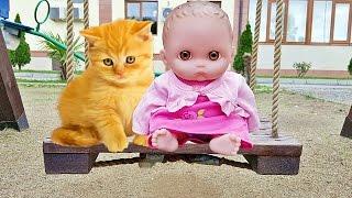 Куклы Пупсик Кормит собачку и Много кошек и котята играют с Пупсиком #5 Детский Влог Малыш Зырики ТВ