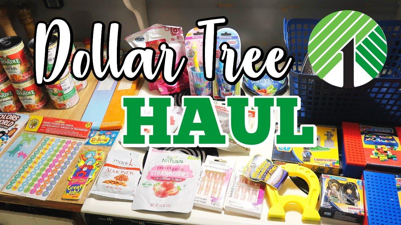 DOLLAR TREE HAUL   July 2021