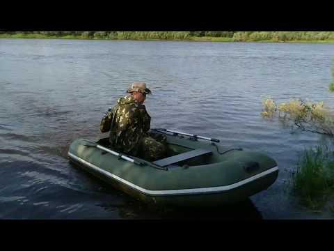 Река Луза. Природа. Рыбалка. Отдых. Лузский район, Кировская область. июнь 2019