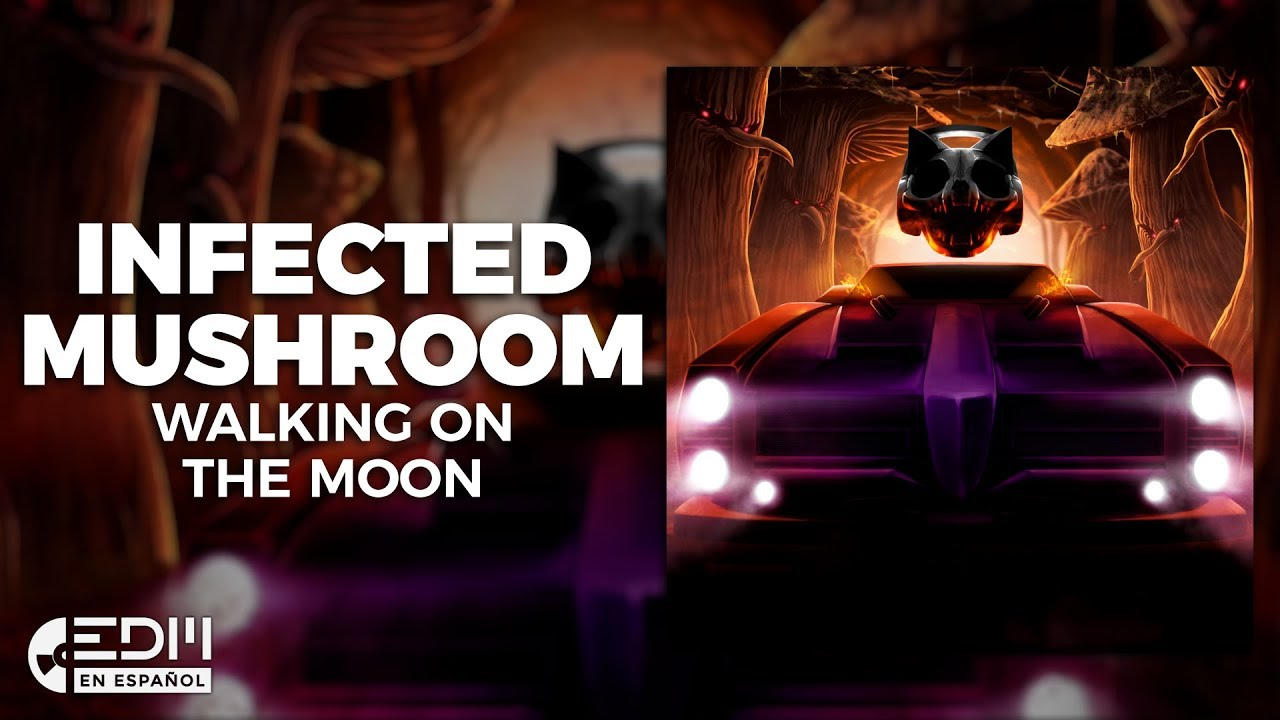 LETRA I WISH EN ESPAÑOL - Infected Mushroom