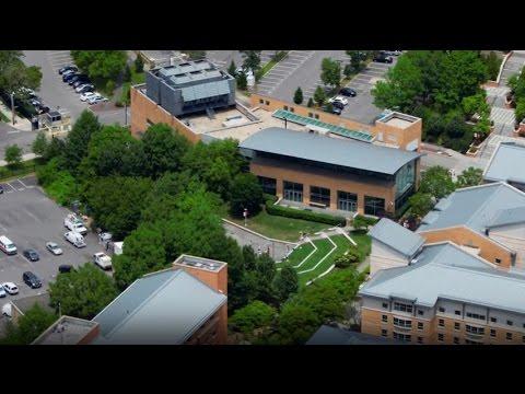 St. John's University - 5 Things I Wish I Knew Before Attending