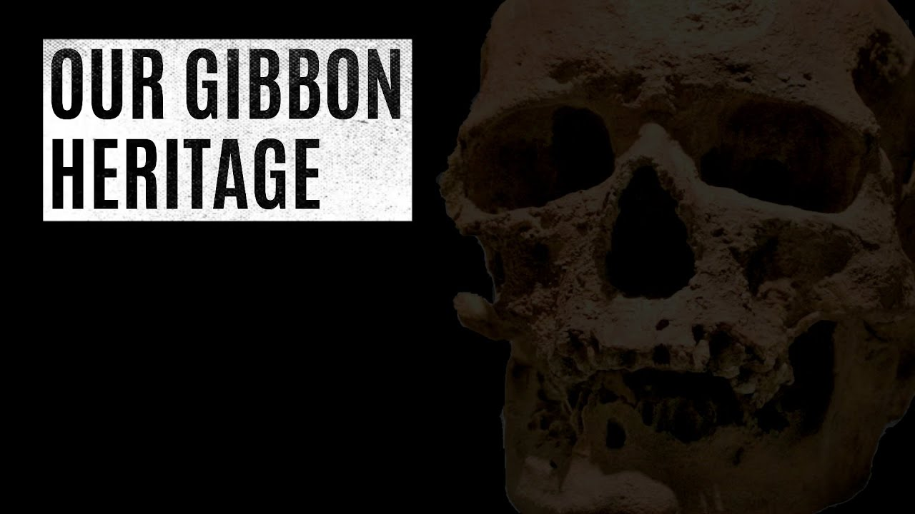 Our Gibbon Heritage