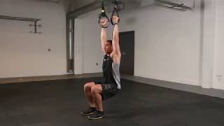 dynamic duo trx duo trainer hang