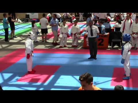 KATA - KUMITE **2015 International Escaldes Karate OPEN...AN