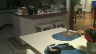 Paper Clip Trebuchet
