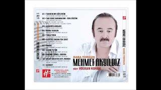 Mehmet Akyıldız / Fadime Temel / Horon (Audio)