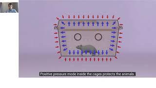 Оборудование и технологические решения для вивария: современные барьерные технологии на примере ИВК