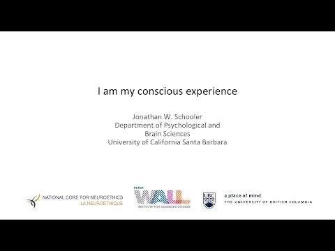 """I Am My Conscious Experience"" by Jonathan W. Schooler"