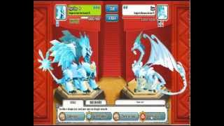 Dragon City - Duelos Final