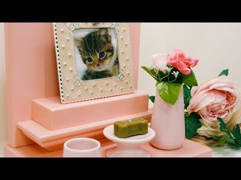 Tokyo's Pet Loss Cafe offers a place to grieve and heal
