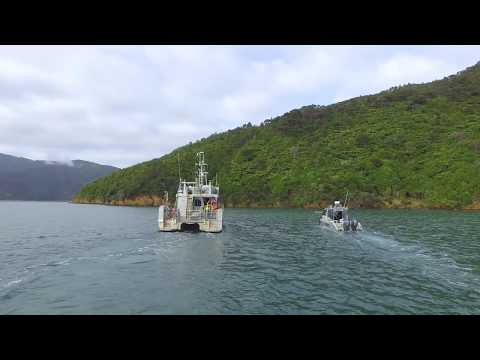 Marlborough Sounds Seabed Survey project