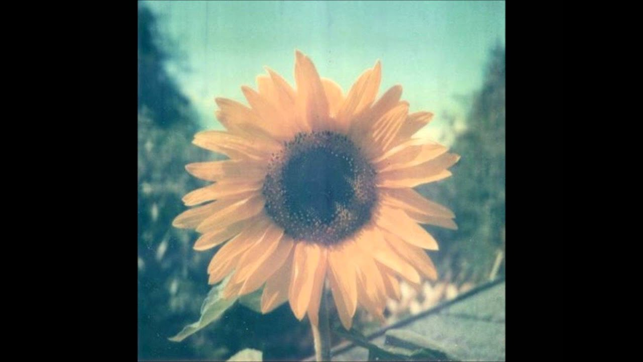 elizabeth-mitchell-you-are-my-sunshine-mscupcakedarling
