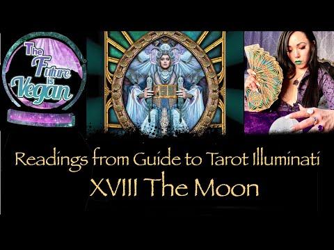 the-moon-in-guide-to-tarot-illuminati-by-kim-huggins