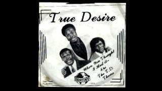 TRUE DESIRE - When You Throught I Had It