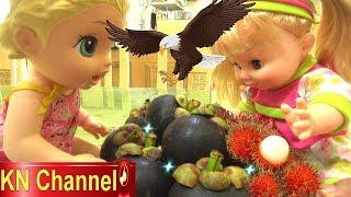 Đồ chơi trẻ em BÚP BÊ KN Channel BỊ CHIM QUẠ TẤN CÔNG   ĂN CẮP TRÁI CÂY
