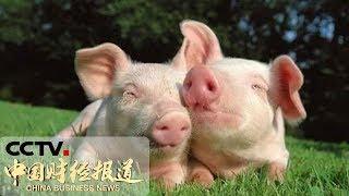 《中国财经报道》 20190513 15:00  CCTV财经