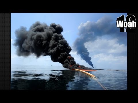 12 Shocking Facts About The BP Oil Spill