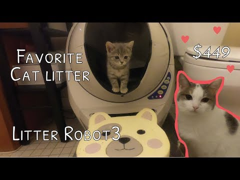 Cat's favorite Litter box- Litter Robot 3 unboxing review - 고양이 자동 로봇 화장실 리뷰