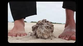 Arthus Fochi e Ivo Vargas - Canção do sol (Clipe Oficial)