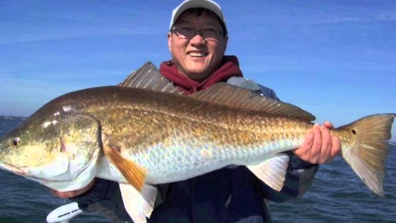 Perdido key fishing youtube for Perdido key fishing