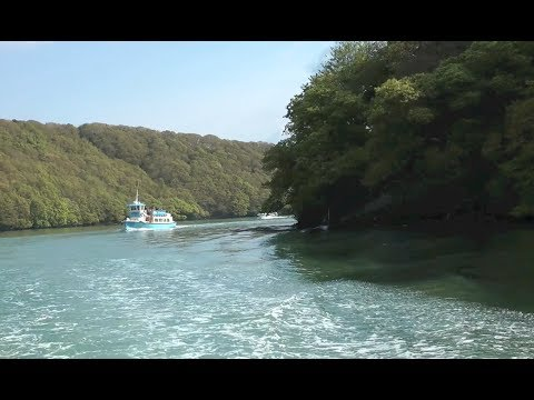 THE FAL RIVER CRUISE (TRURO - FALMOUTH)