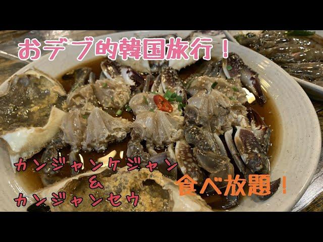 【韓国旅行】おデブがカンジャンケジャン、カンジャンセウをただ食べる!