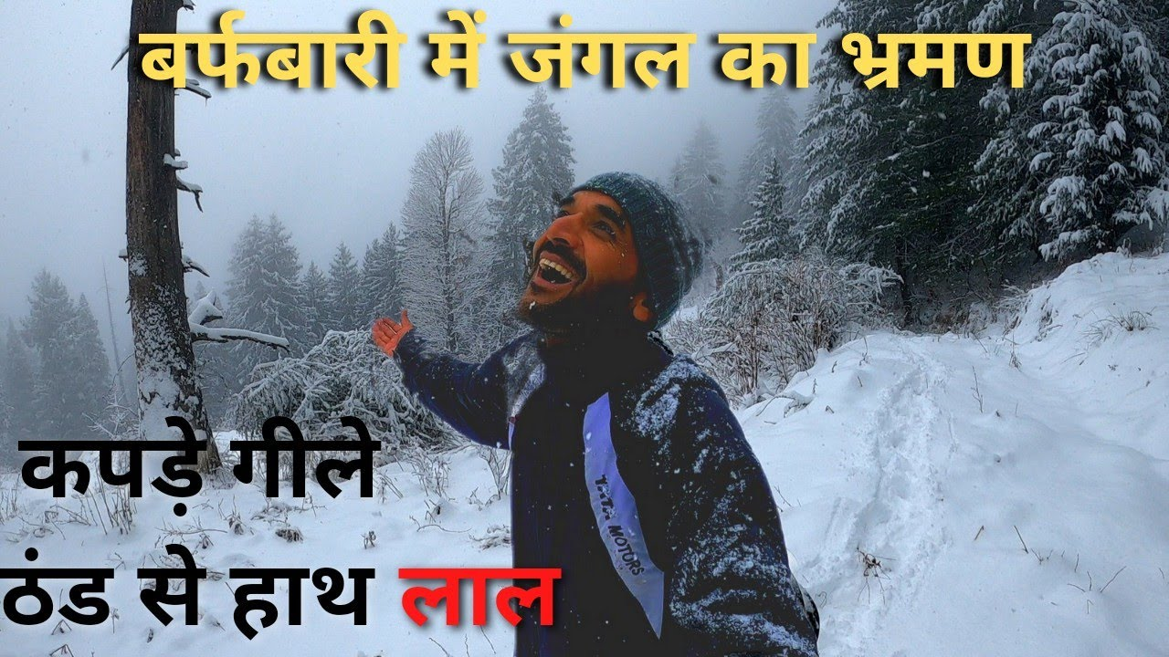 Jungle Safari amidst Heavy Snowfall || Trekking in Himalayan Jungle || Life in a Himalayan Village