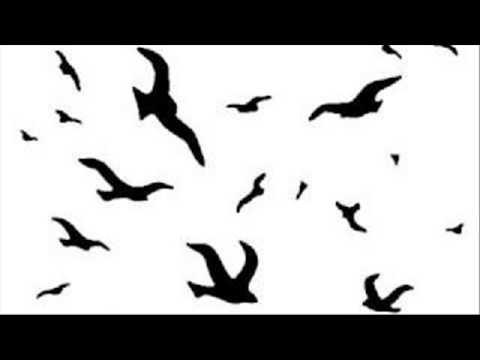 Schandmaul   Vogelfrei mp3