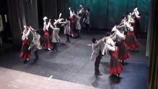 Rīgas deju kolektīvu skate KP Ziemeļblāzma (26.04.2014) - 00235