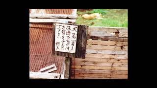 渋谷陽一 ・NHK・FM サウンドストリート「ボブ・マーリー追悼」