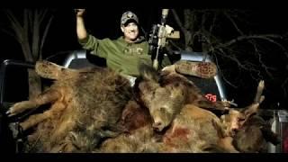 ATN ThOR 4 Is This Hog Hunters Thermal Optic Choice!