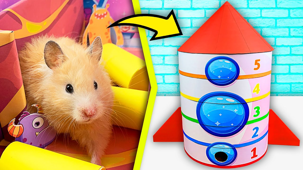 Rocket - Maze for Hamster 🚀 5 - Level SpaceX Maze