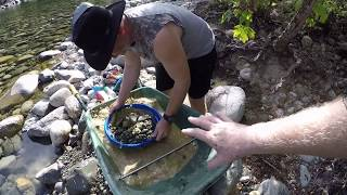 Overnighter and gold panning on the River