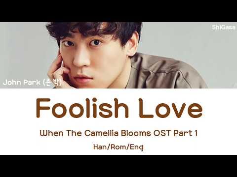 John Park (존 박) - Foolish Love (When The Camellia Blooms OST Part 1) Lyrics (Han/Rom/Eng)