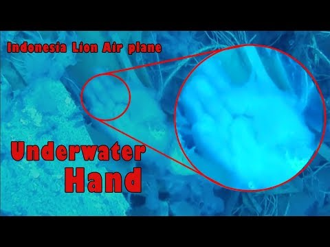 Indonesia Lion Air Plane Underwater 🎥 Unseen Videos