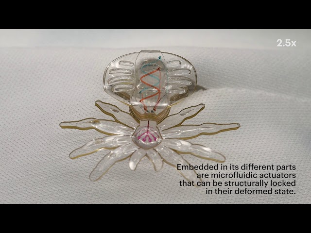 MORPH: A new soft material microfabrication process