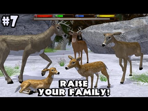 Ultimate Forest Simulator - Deer : Raise a Family - Android/iOS - Gameplay Episode 7