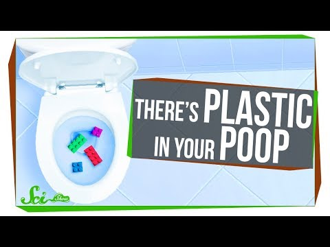 Why You Should Care About the Plastic in Your Poop