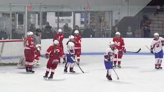 1-31-18 NHS Girls Hockey vs Milton 7-2 W