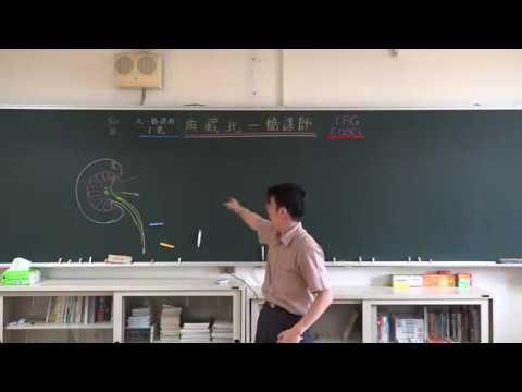 【潘彥宏老師】基礎生物(上) 23 | 第三章動物的構造與功能  第三節 呼吸與排泄