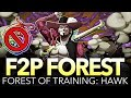 F2P FOREST OF TRAINING: HAWK! (One Piece Treasure Cruise - Global)