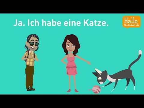 Deutsch Lernen Mit Dialogen / Lektion 23 / Hast Du Ein Haustier? / Was Isst Du Am Liebsten?