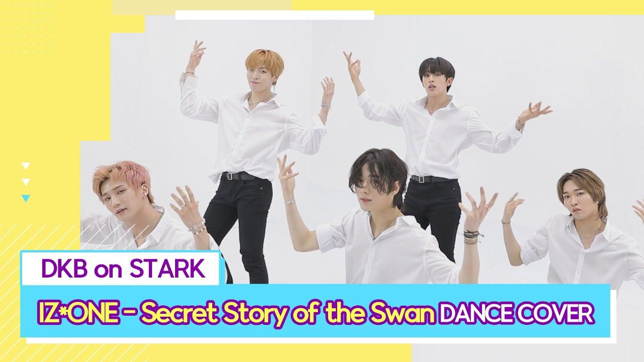 IZ*ONE 아이즈원 - Secret Story of the Swan 환상동화(DKB FULL DANCE COVER)